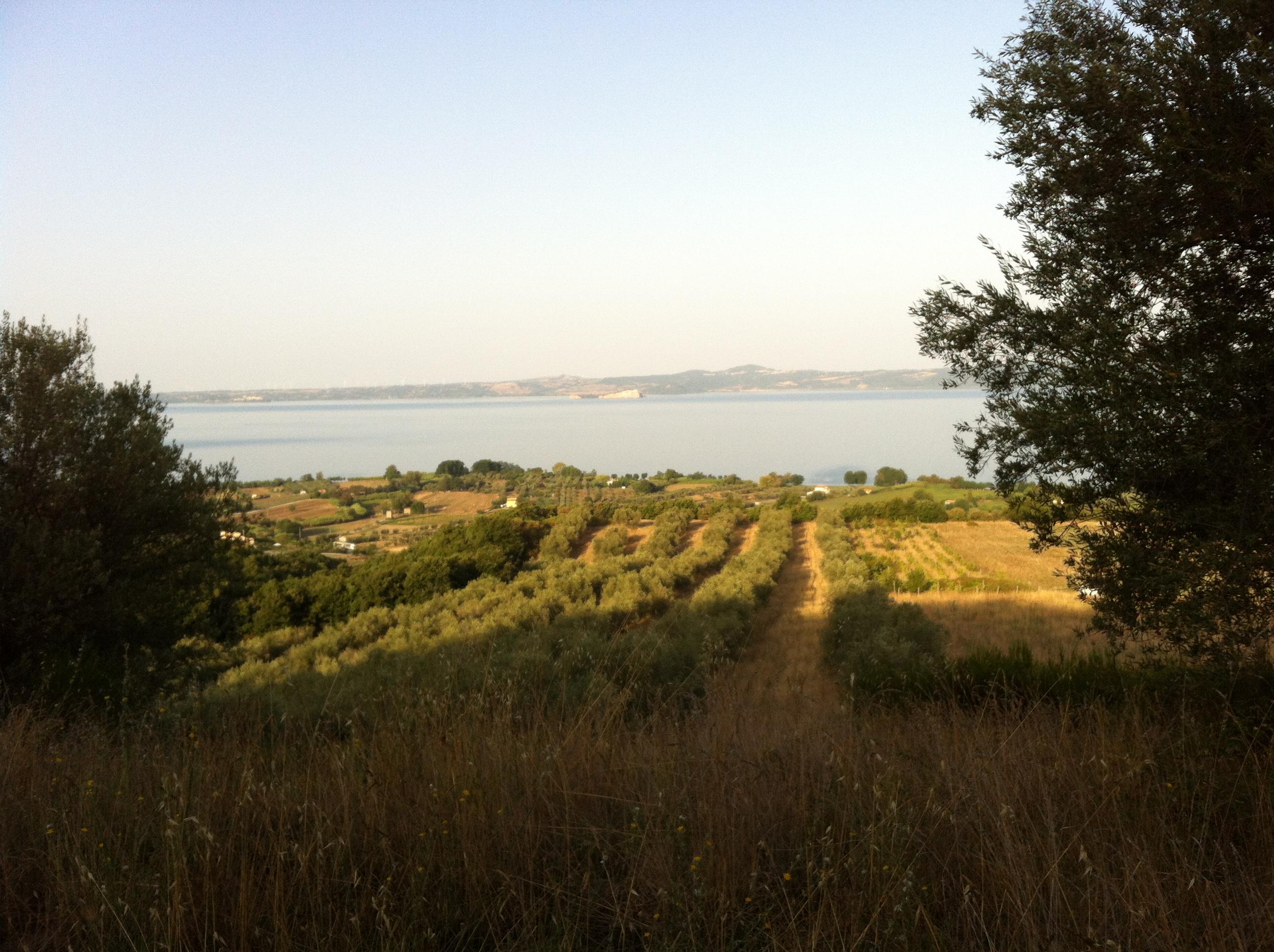 Tappa 23: Bolsena – Montefiascone